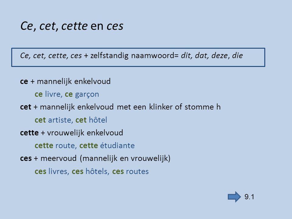 oefenen frans grammatica