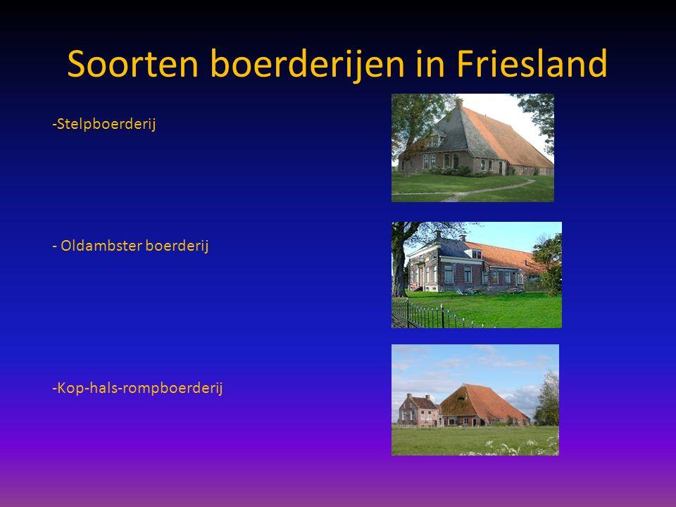 Soorten boerderijen in Friesland