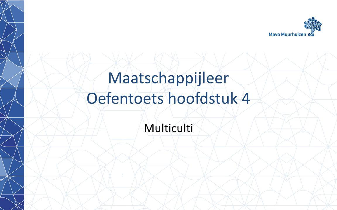 Maatschappijleer Oefentoets hoofdstuk 4 Multiculti