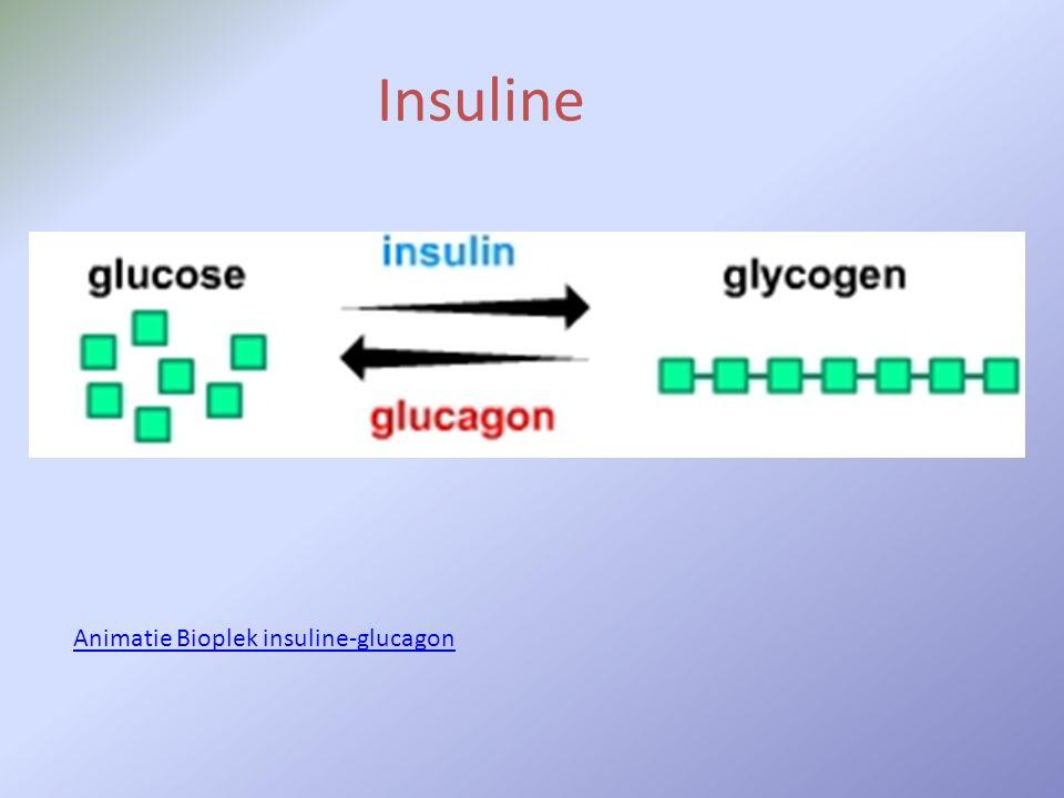 Insuline Animatie Bioplek insuline-glucagon