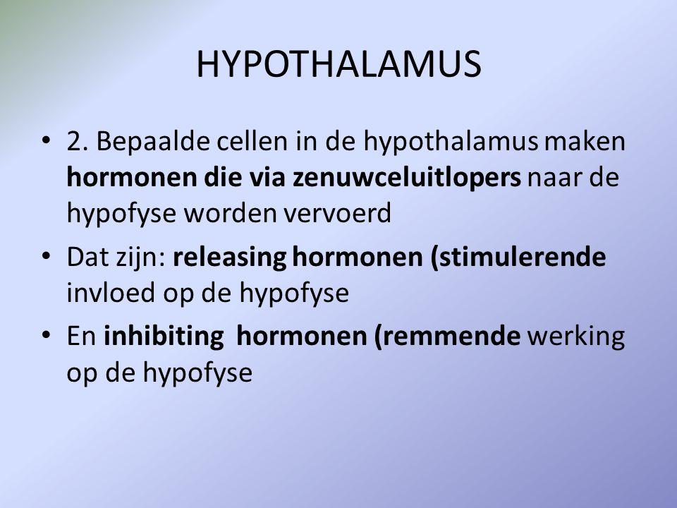 HYPOTHALAMUS 2. Bepaalde cellen in de hypothalamus maken hormonen die via zenuwceluitlopers naar de hypofyse worden vervoerd.