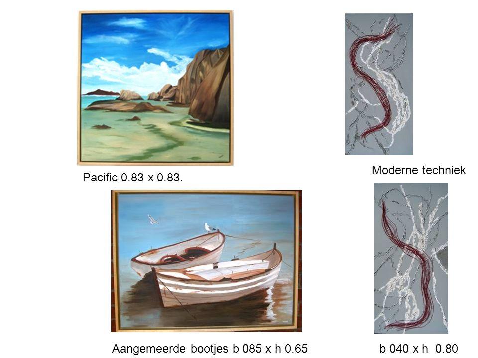 Moderne techniek Pacific 0.83 x 0.83 . Aangemeerde bootjes b 085 x h 0.65 b 040 x h 0.80