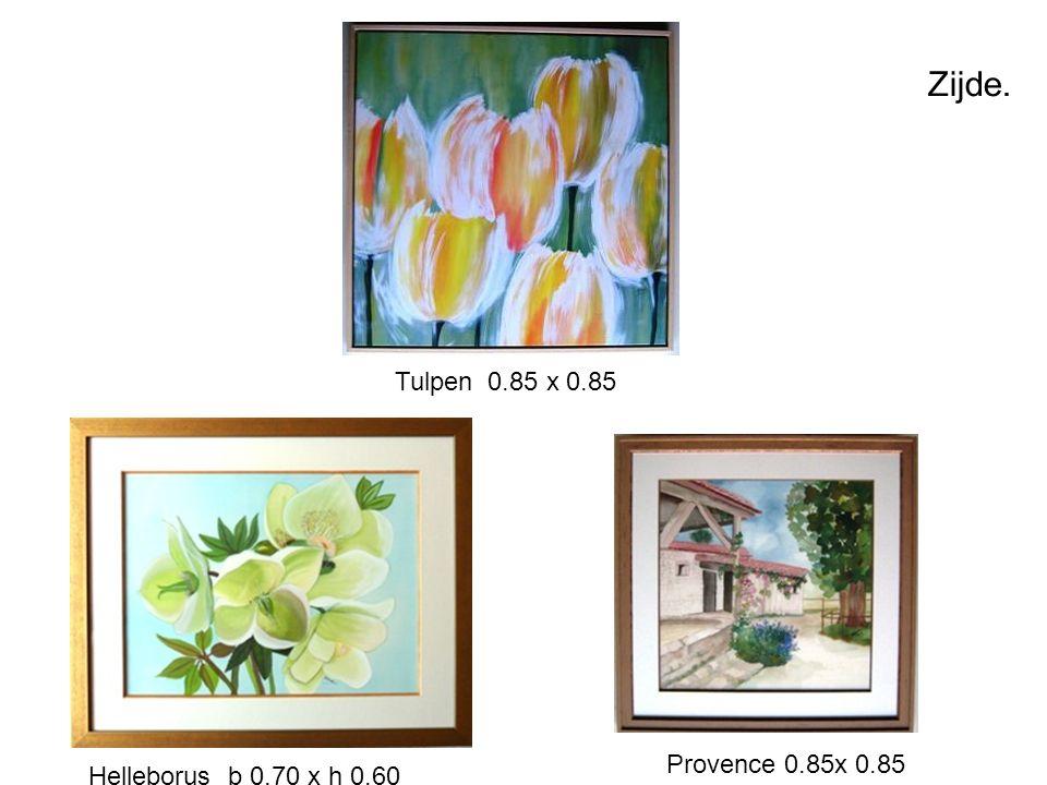 Zijde. Tulpen 0.85 x 0.85 Provence 0.85x 0.85