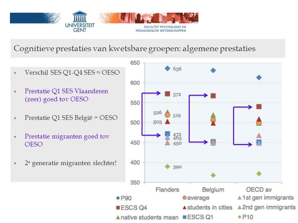 Cognitieve prestaties van kwetsbare groepen: algemene prestaties