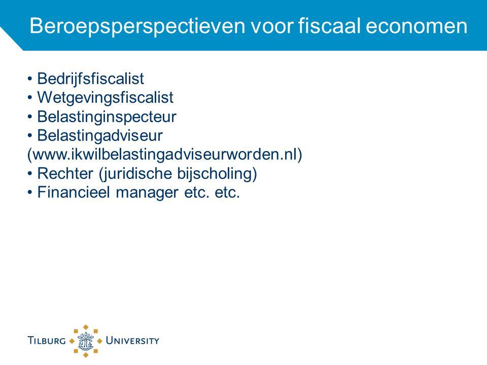 Beroepsperspectieven voor fiscaal economen