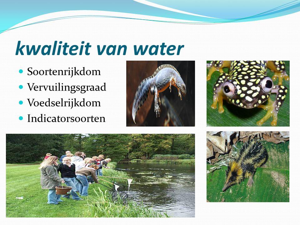kwaliteit van water Soortenrijkdom Vervuilingsgraad Voedselrijkdom