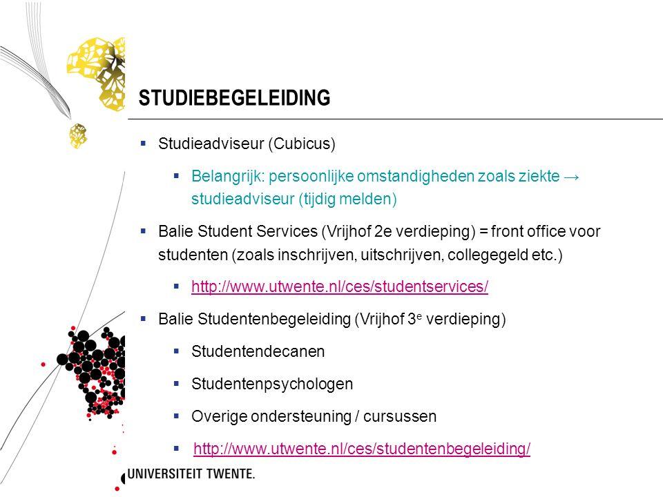 STUDIEBEGELEIDING Studieadviseur (Cubicus)