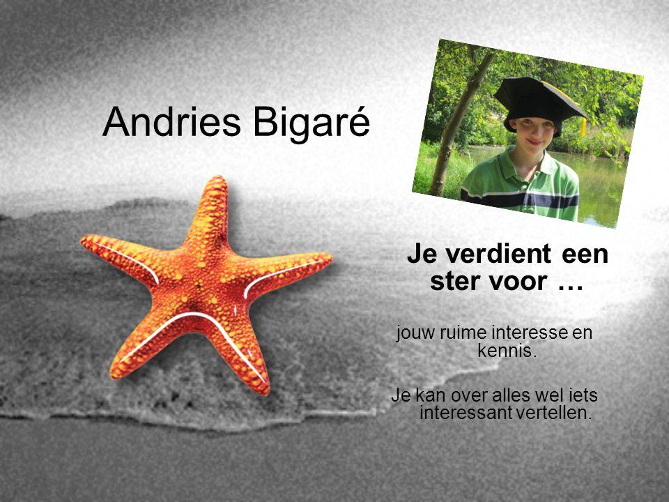Andries Bigaré Je verdient een ster voor …