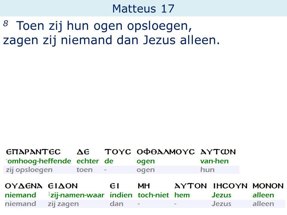 8 Toen zij hun ogen opsloegen, zagen zij niemand dan Jezus alleen.