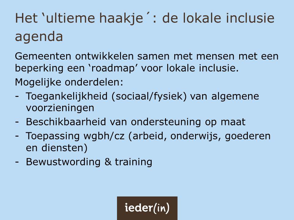 Het 'ultieme haakje´: de lokale inclusie agenda
