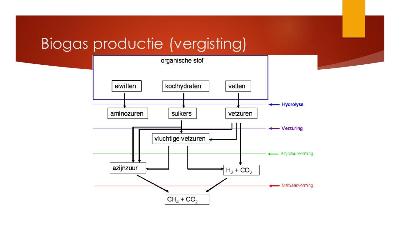 Biogas productie (vergisting)