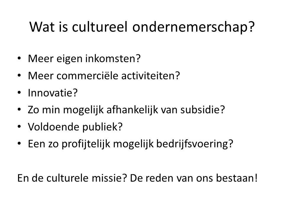 Wat is cultureel ondernemerschap