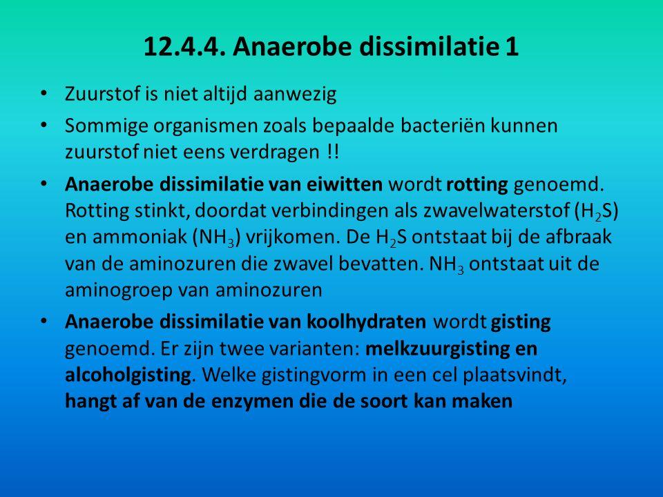 12.4.4. Anaerobe dissimilatie 1