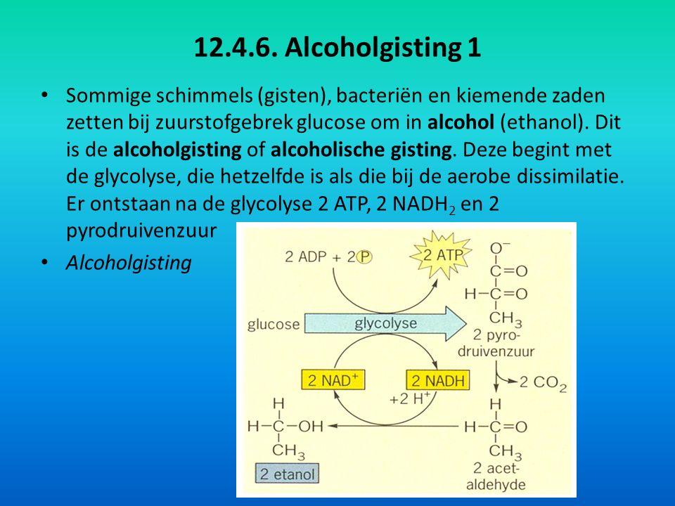 12.4.6. Alcoholgisting 1