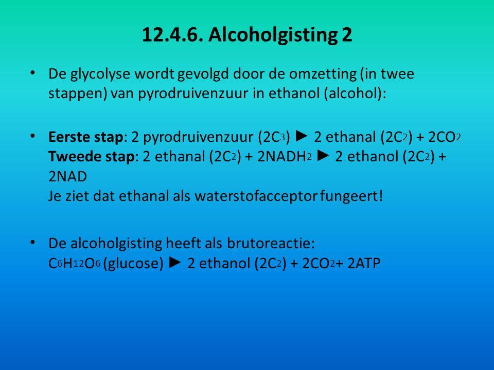 12.4.6. Alcoholgisting 2 De glycolyse wordt gevolgd door de omzetting (in twee stappen) van pyrodruivenzuur in ethanol (alcohol):