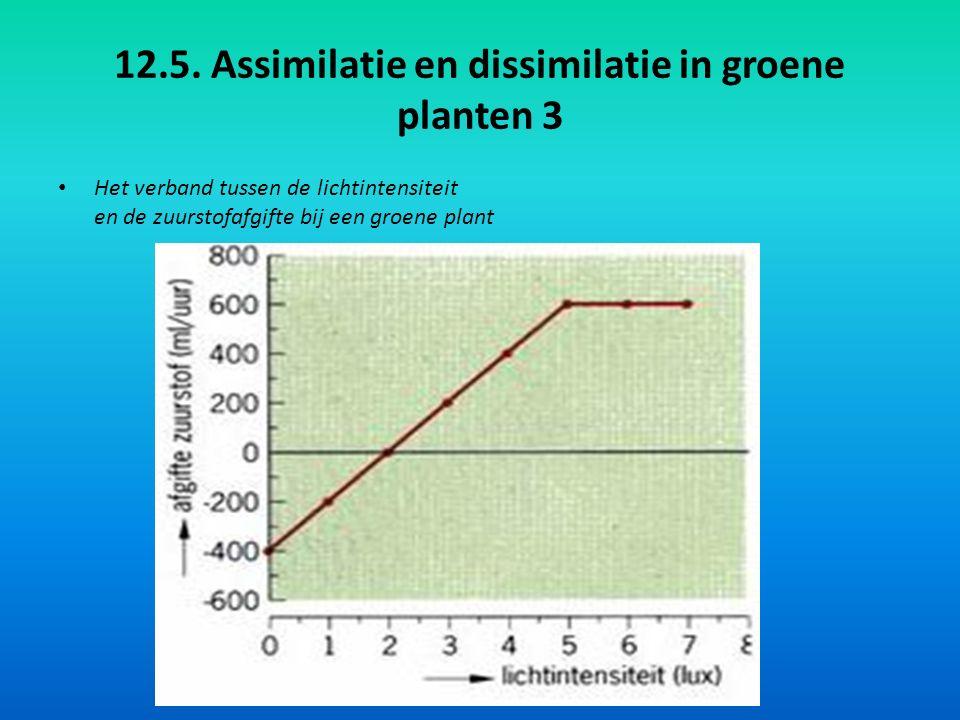 12.5. Assimilatie en dissimilatie in groene planten 3
