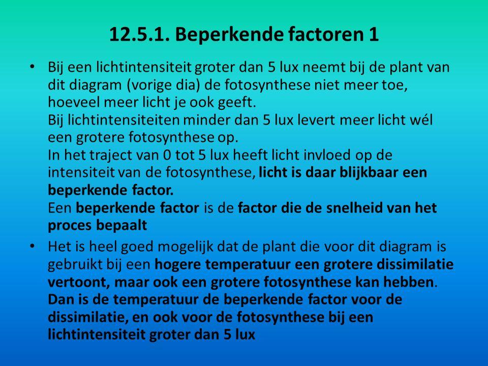 12.5.1. Beperkende factoren 1
