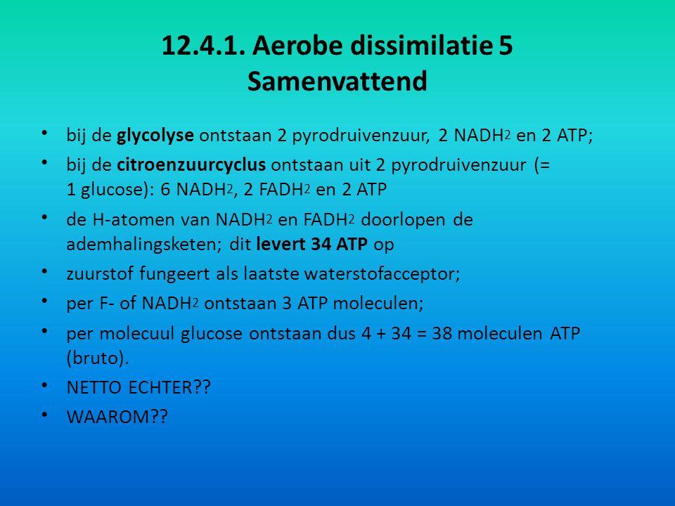 12.4.1. Aerobe dissimilatie 5 Samenvattend