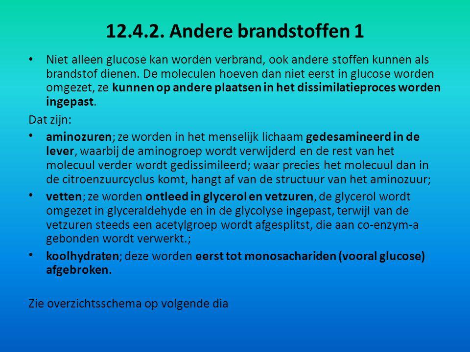 12.4.2. Andere brandstoffen 1