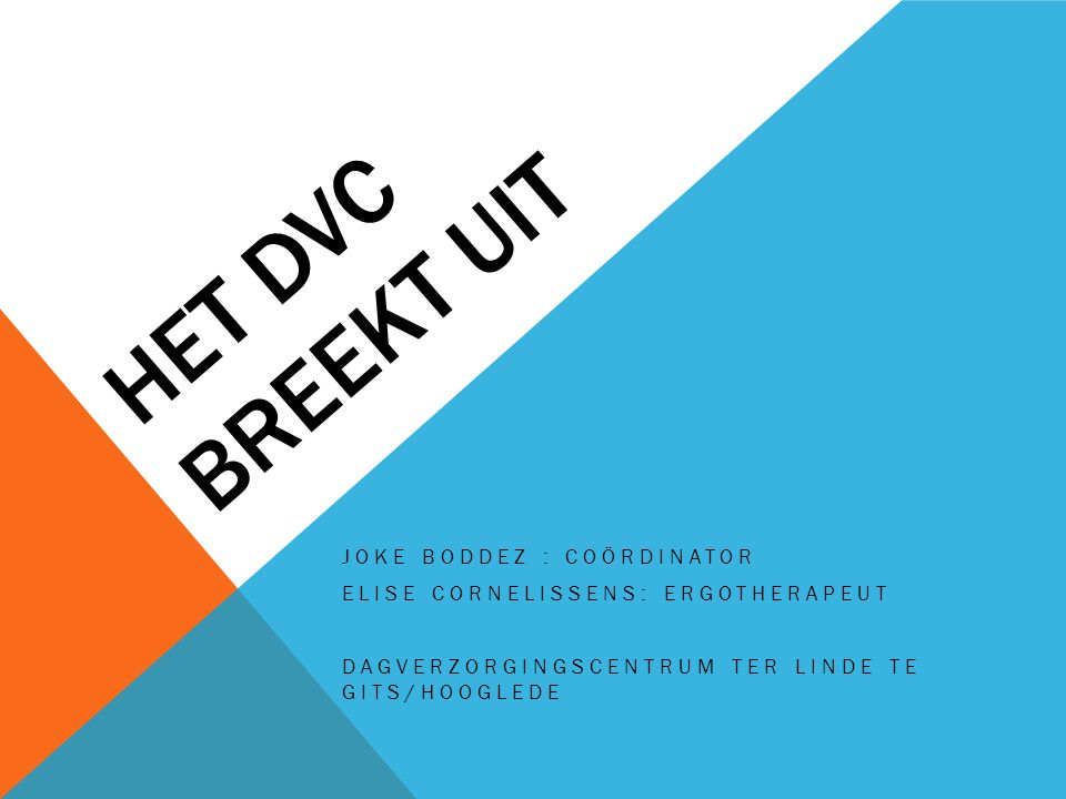 Het DVC breekt uit Joke Boddez : coördinator