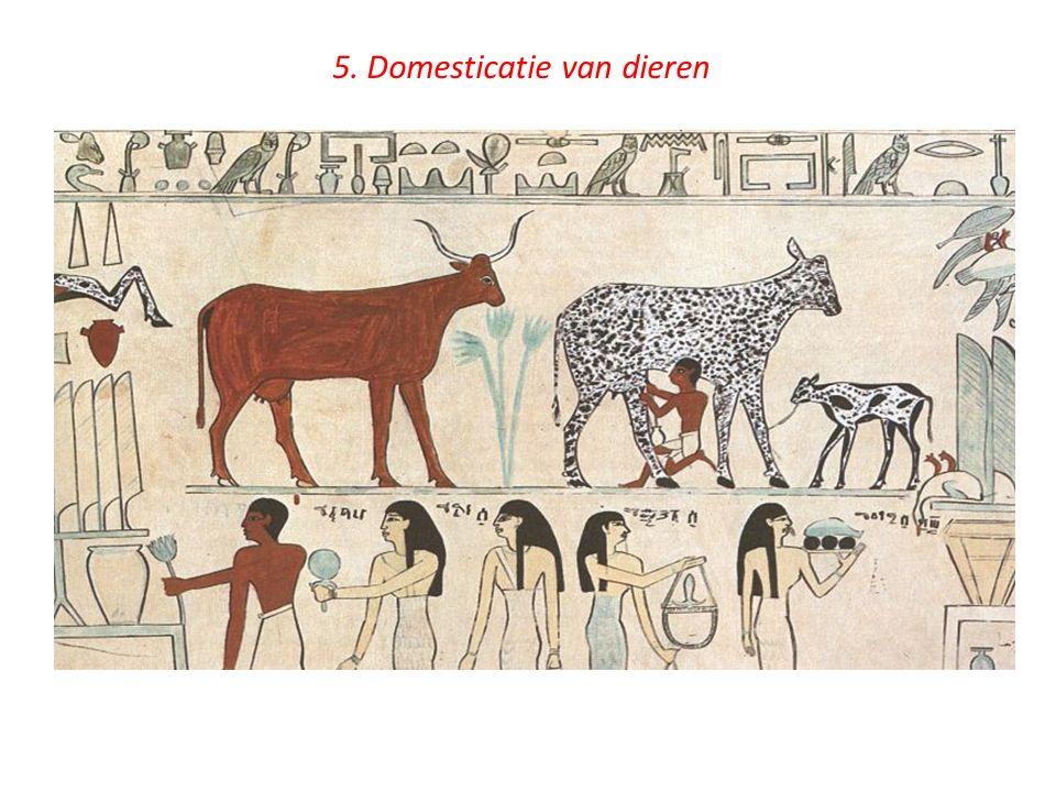 5. Domesticatie van dieren