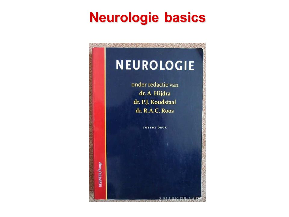 Neurologie basics