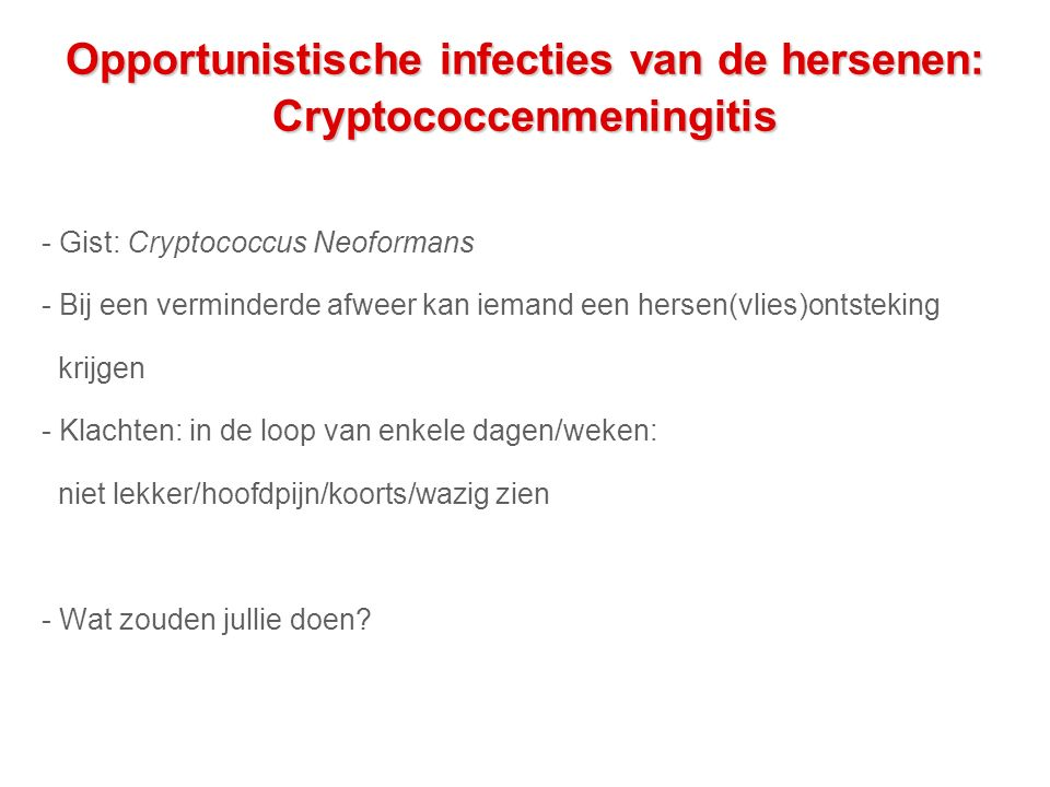Opportunistische infecties van de hersenen: Cryptococcenmeningitis