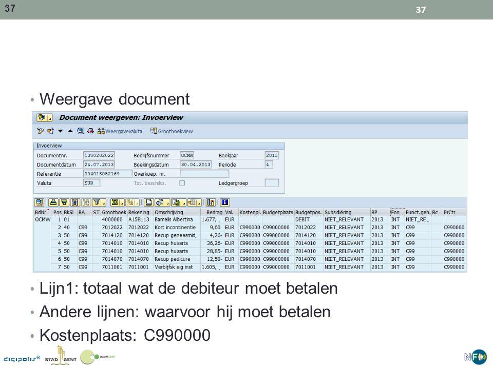 Weergave document Lijn1: totaal wat de debiteur moet betalen. Andere lijnen: waarvoor hij moet betalen.