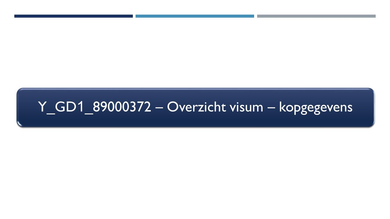 Y_GD1_89000372 – Overzicht visum – kopgegevens