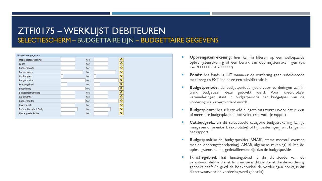 ZTFI0175 – Werklijst debiteuren Selectiescherm – budgettaire lijn – budgettaire gegevens