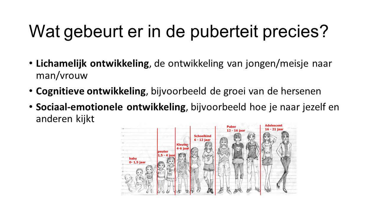 Wat gebeurt er in de puberteit precies