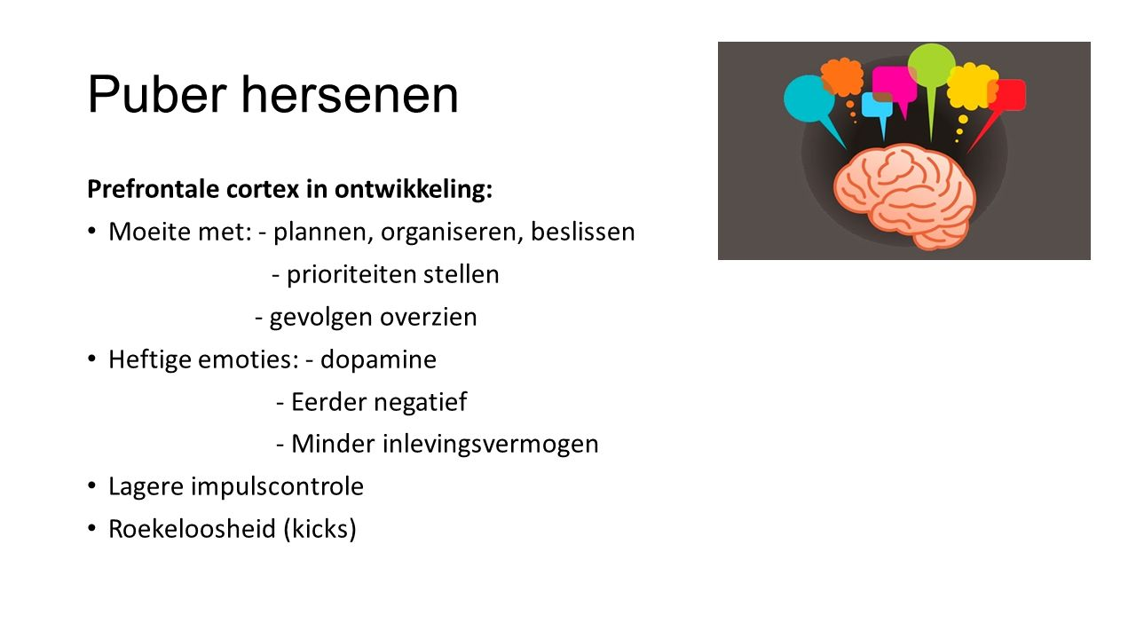 Puber hersenen Prefrontale cortex in ontwikkeling: