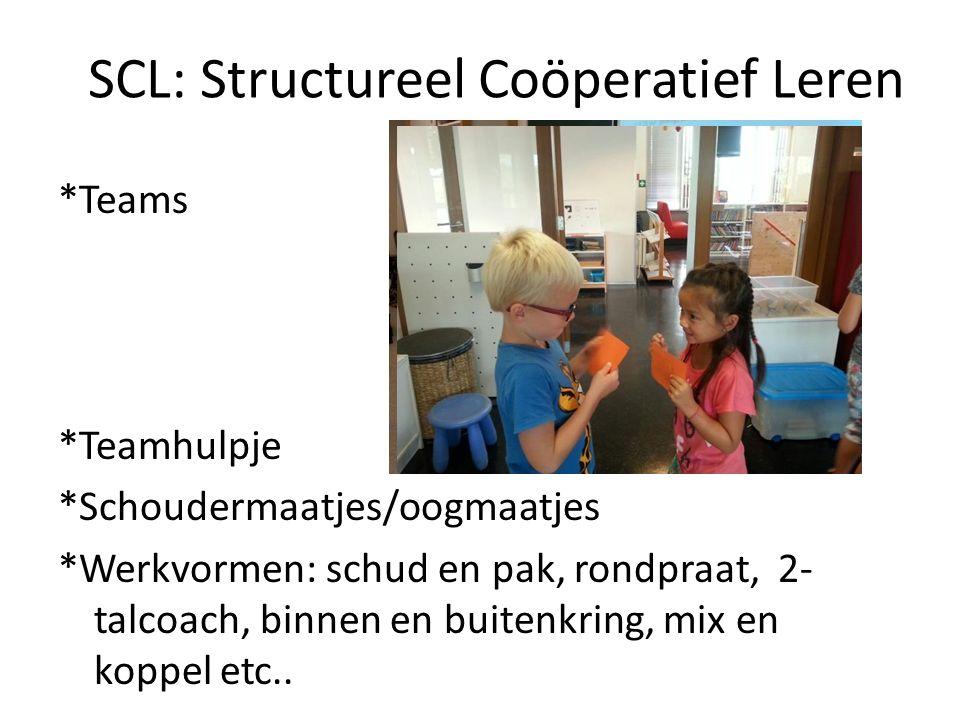 SCL: Structureel Coöperatief Leren