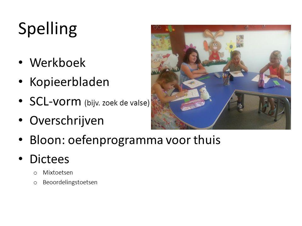 Spelling Werkboek Kopieerbladen SCL-vorm (bijv. zoek de valse)