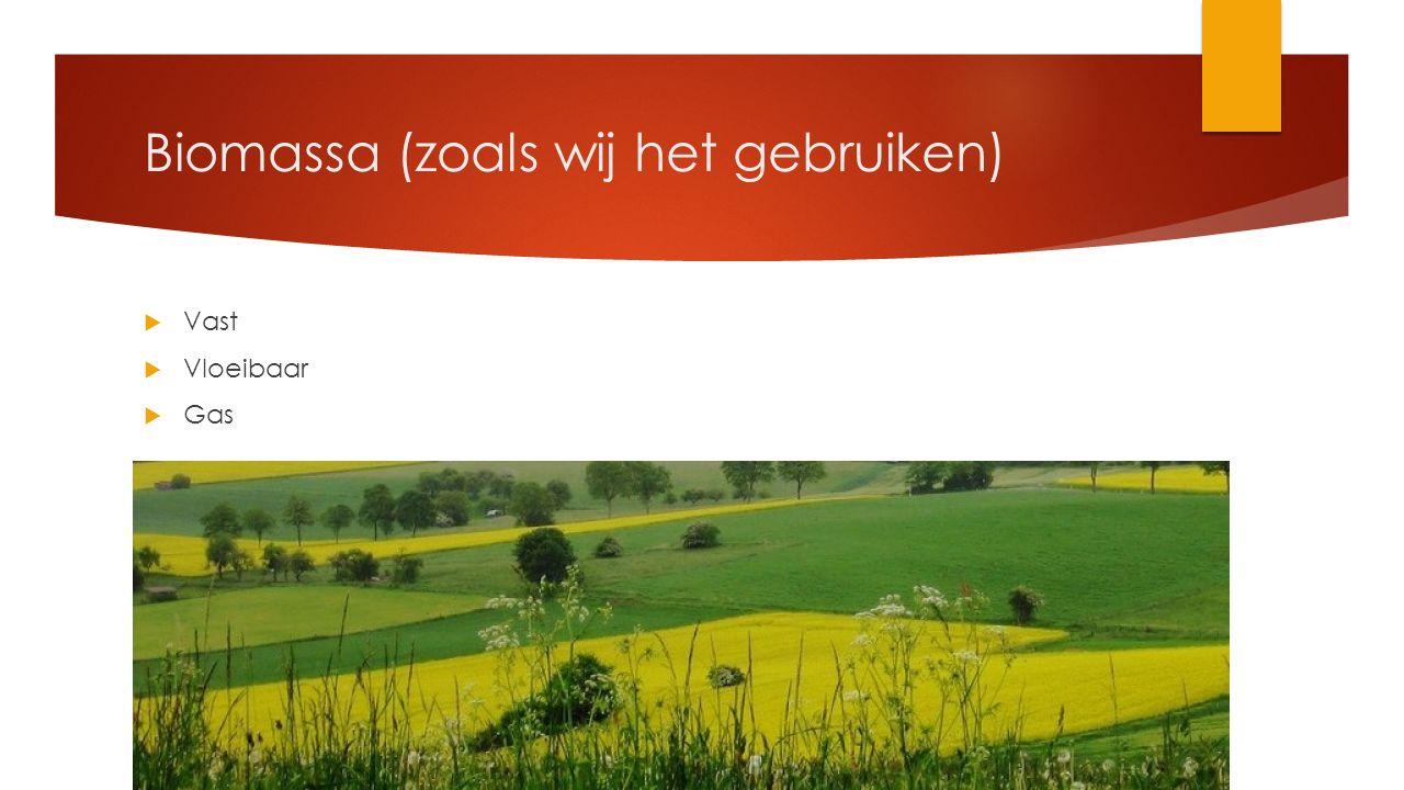Biomassa (zoals wij het gebruiken)