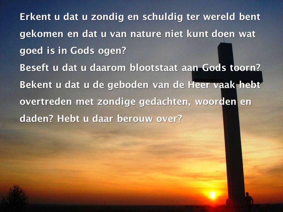 Erkent u dat u zondig en schuldig ter wereld bent gekomen en dat u van nature niet kunt doen wat goed is in Gods ogen.