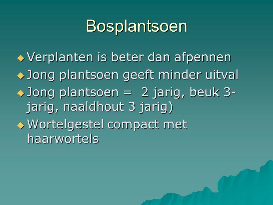Bosplantsoen Verplanten is beter dan afpennen