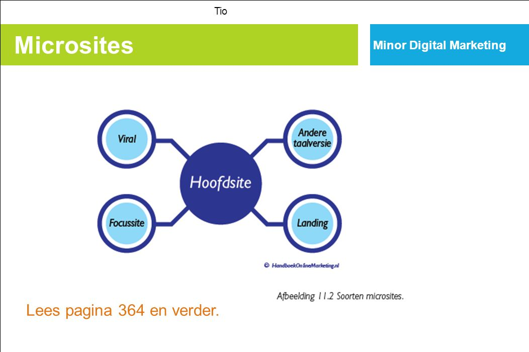 Tio Minor Digital Marketing Microsites Lees pagina 364 en verder.