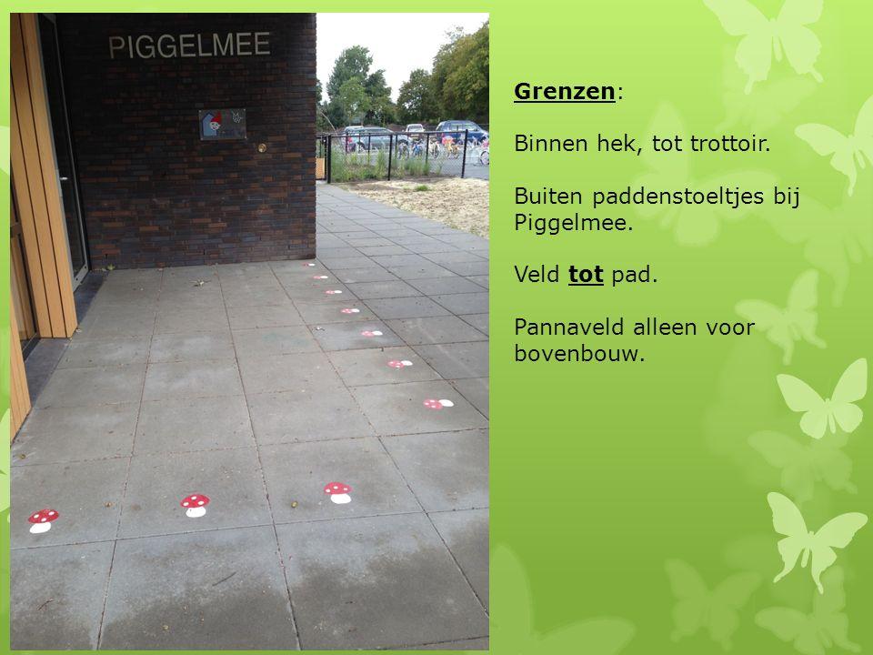 Grenzen: Binnen hek, tot trottoir. Buiten paddenstoeltjes bij Piggelmee.