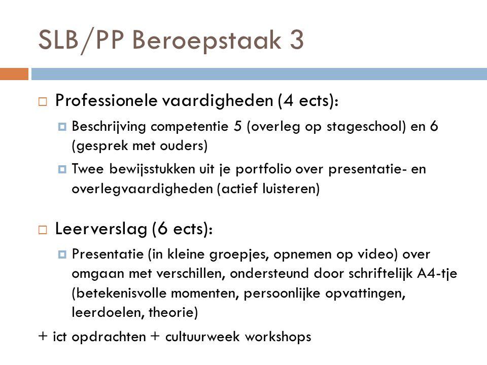 SLB/PP Beroepstaak 3 Professionele vaardigheden (4 ects):