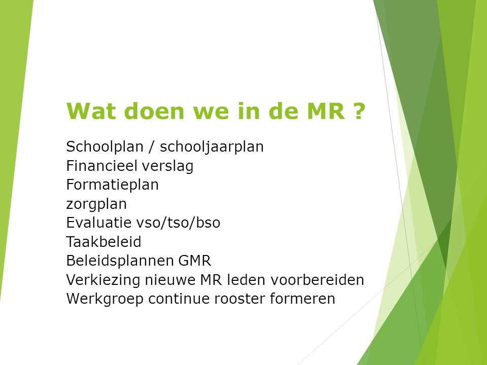 Wat doen we in de MR Schoolplan / schooljaarplan Financieel verslag