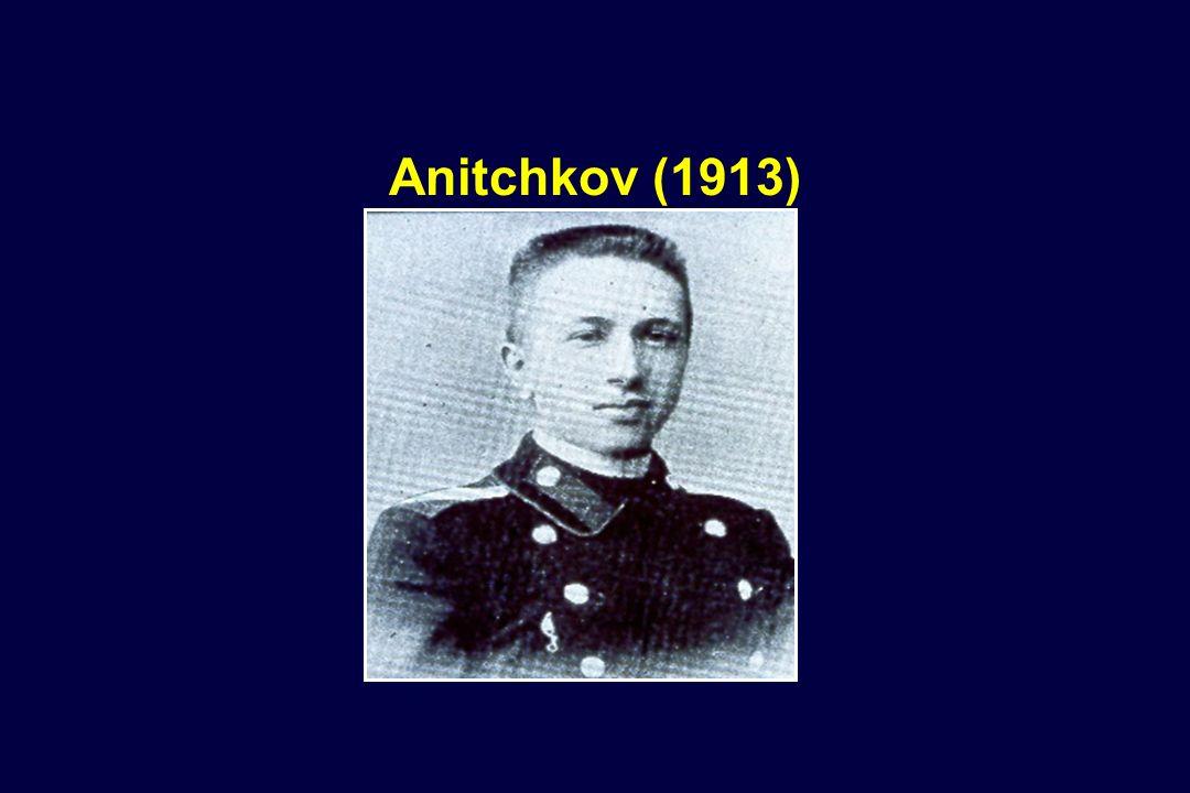 Anitchkov (1913)