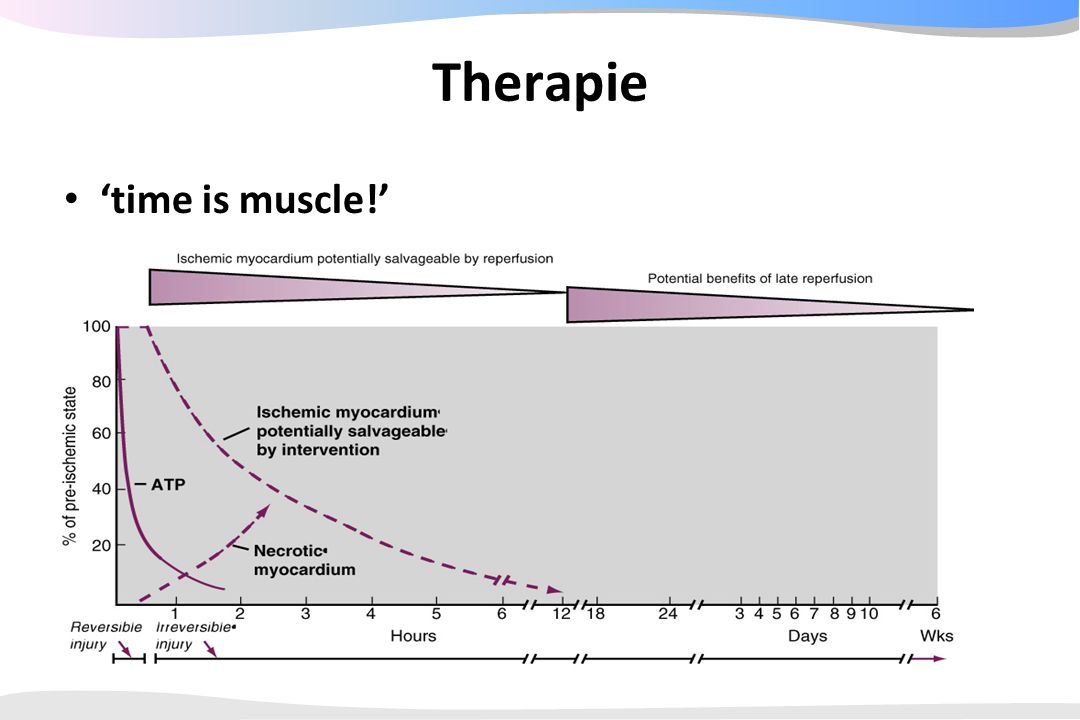 Therapie 'time is muscle!'