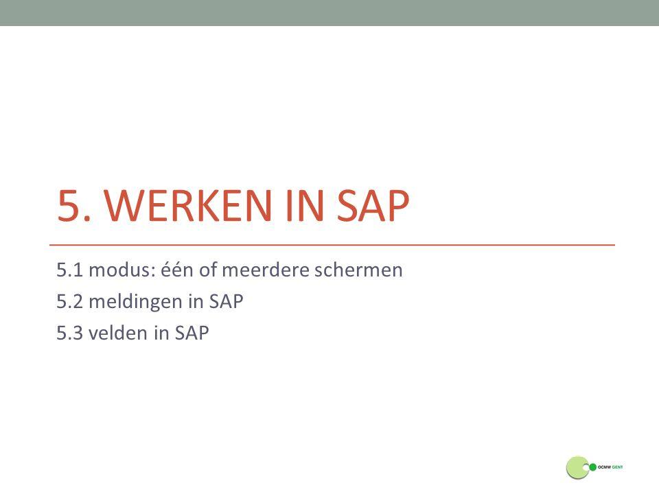 5. WERKEN IN SAP 5.1 modus: één of meerdere schermen