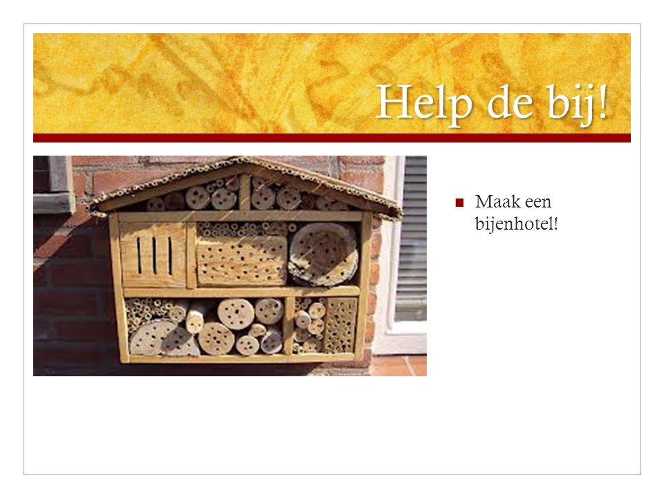 Help de bij! Maak een bijenhotel!
