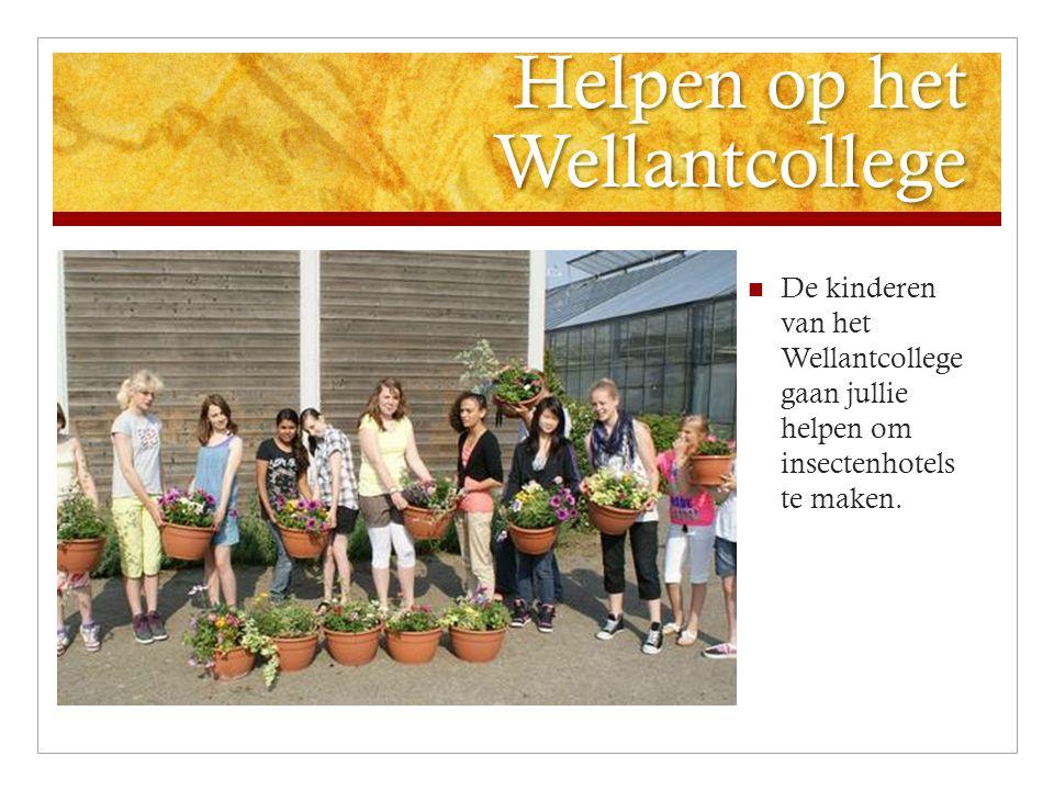 Helpen op het Wellantcollege