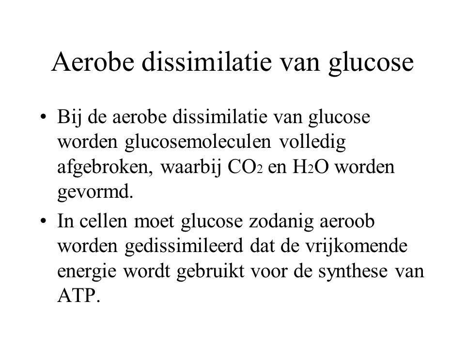 Aerobe dissimilatie van glucose