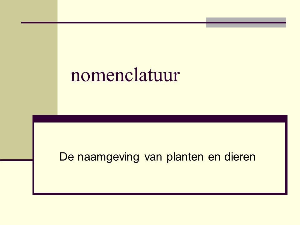 De naamgeving van planten en dieren