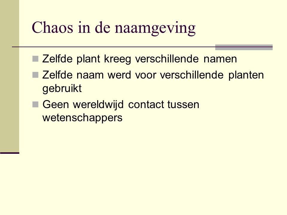 Chaos in de naamgeving Zelfde plant kreeg verschillende namen