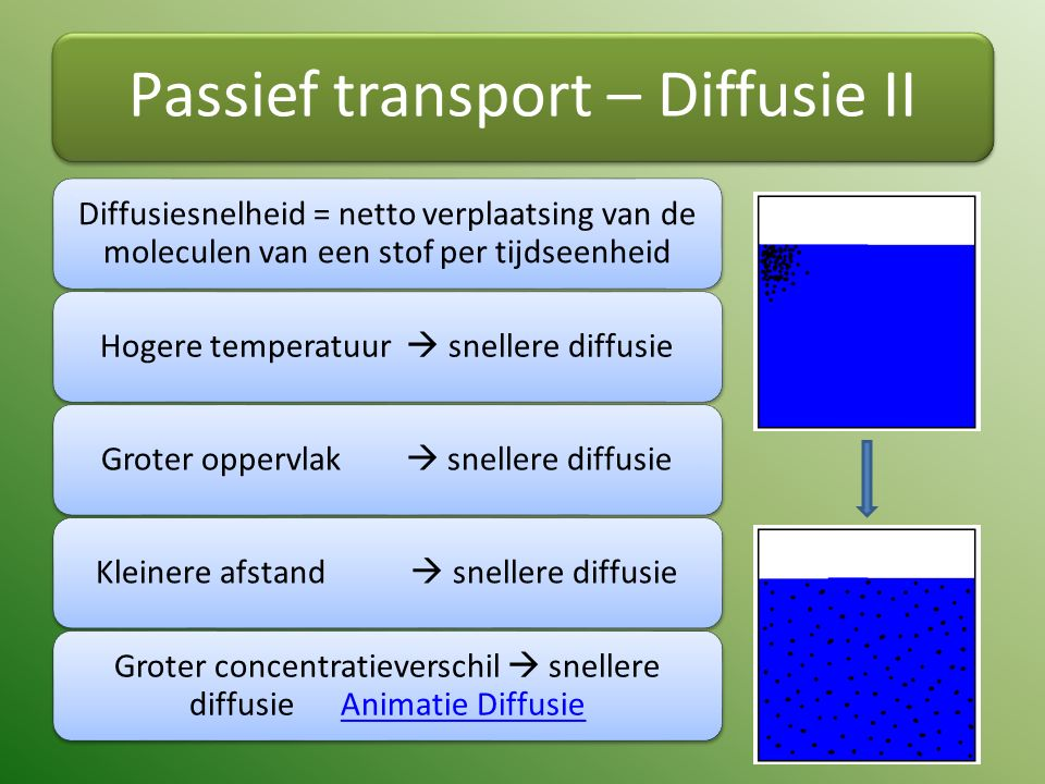 Passief transport – Diffusie II